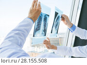 Doctors discuss x-ray. Стоковое фото, фотограф Иван Михайлов / Фотобанк Лори