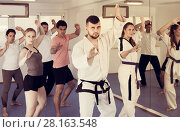 Купить «Adults trying new martial moves at karate class», фото № 28163548, снято 8 апреля 2017 г. (c) Яков Филимонов / Фотобанк Лори