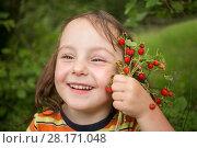 Купить «Little girl holds red wild strawberry and smiles outdoor, close up, shallow dof», фото № 28171048, снято 2 июля 2016 г. (c) Losevsky Pavel / Фотобанк Лори