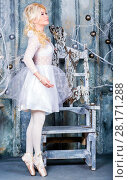 Купить «Pretty ballerina in dress and pointe shoes poses in winter studio», фото № 28171288, снято 27 ноября 2015 г. (c) Losevsky Pavel / Фотобанк Лори