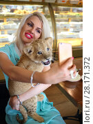 Купить «Beautiful woman holds funny calf of lion at table in cafe and makes selfie», фото № 28171372, снято 13 июля 2016 г. (c) Losevsky Pavel / Фотобанк Лори