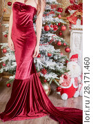 Купить «Body of young girl in red dress standing in room decorated to christmas holidays», фото № 28171460, снято 9 декабря 2015 г. (c) Losevsky Pavel / Фотобанк Лори