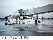 Купить «MOSCOW - JUL 20, 2016: Aircraft during boarding in Domodedovo airport, Airport route network covers more than 189 destination», фото № 28171808, снято 20 июля 2016 г. (c) Losevsky Pavel / Фотобанк Лори