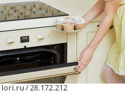 Купить «Female hands hold plate with homemade baked cupcakes and close door of oven at kitchen», фото № 28172212, снято 19 января 2016 г. (c) Losevsky Pavel / Фотобанк Лори