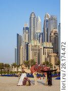 Купить «Camel Ride on the Dubai Marina JBR Beach, Dubai, United Arab Emirates.», фото № 28174472, снято 7 января 2018 г. (c) age Fotostock / Фотобанк Лори