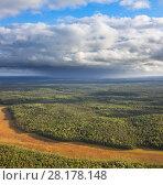 Summer calm day on the forest plain. Стоковое фото, фотограф Владимир Мельников / Фотобанк Лори