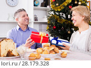 Купить «Mature couple give Christmas gifts», фото № 28179328, снято 21 марта 2019 г. (c) Яков Филимонов / Фотобанк Лори