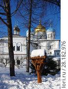Купить «Москва, Новоспасский монастырь зимой», фото № 28182976, снято 27 февраля 2018 г. (c) Natalya Sidorova / Фотобанк Лори