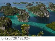 Купить «Karst islands in Misool archipelago, Raja Ampat, Western Papua, Indonesian New Guinea. December 2016.», фото № 28183924, снято 24 августа 2019 г. (c) Nature Picture Library / Фотобанк Лори