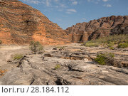 Купить «Dry river bed leading to the extraordinary array of banded, beehive-shaped cone towers comprising the Bungle Bungle Range, Purnululu National Park, UNESCO...», фото № 28184112, снято 22 августа 2018 г. (c) Nature Picture Library / Фотобанк Лори
