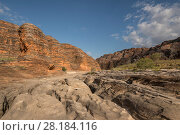 Купить «Dry river bed leading to the extraordinary array of banded, beehive-shaped cone towers comprising the Bungle Bungle Range. The rock formations are caused...», фото № 28184116, снято 22 августа 2018 г. (c) Nature Picture Library / Фотобанк Лори