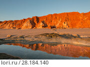 Купить «Reflections on the waters along the beach. Spectacular views of ochre-coloured earth and sandstone cliffs, white sands and aquamarine waters of the Dampier...», фото № 28184140, снято 21 марта 2018 г. (c) Nature Picture Library / Фотобанк Лори
