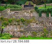 Купить «Plantation Garden, a restored Victorian town garden, Earlham Road, Norwich  Norfolk. England, UK, August 2017.», фото № 28184688, снято 24 мая 2018 г. (c) Nature Picture Library / Фотобанк Лори