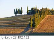 Тосканский пейзаж теплым сентябрьским утром. Италия (2017 год). Стоковое фото, фотограф Виктор Карасев / Фотобанк Лори