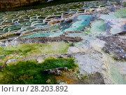 Купить «Terraced basins in Egerszalok thermal spring», фото № 28203892, снято 28 октября 2017 г. (c) Яков Филимонов / Фотобанк Лори