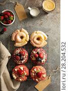 Купить «Variety of donuts on a cooling rack», фото № 28204532, снято 12 марта 2018 г. (c) Елена Веселова / Фотобанк Лори