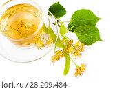 Купить «Чай из цветов липы в стеклянной чашке на белом фоне. Вид сверху», фото № 28209484, снято 19 июля 2017 г. (c) Алёшина Оксана / Фотобанк Лори