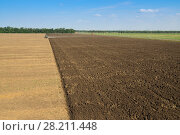 Купить «KRASNODAR REGION, RUSSIA - JUL 7, 2015: Modern tractor with plow plowing field after harvest, In 2015 in Krasnodar region have collected record grain harvest - 102 million tons of grain», фото № 28211448, снято 7 июля 2015 г. (c) Losevsky Pavel / Фотобанк Лори