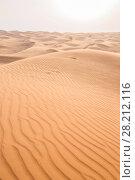 Купить «Beautiful grand desert with big yellow dunes at hot sunny day», фото № 28212116, снято 12 января 2017 г. (c) Losevsky Pavel / Фотобанк Лори