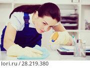 Купить «female cleaning furniture with rag», фото № 28219380, снято 2 июня 2017 г. (c) Яков Филимонов / Фотобанк Лори