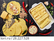 Купить «corn tortillas layered with shredded meat», фото № 28227528, снято 16 марта 2018 г. (c) Oksana Zh / Фотобанк Лори