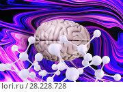 Купить «Composite image of brain», фото № 28228728, снято 22 мая 2019 г. (c) Wavebreak Media / Фотобанк Лори