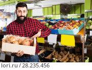 Купить «Positive male seller showing pomegranates in store», фото № 28235456, снято 15 ноября 2016 г. (c) Яков Филимонов / Фотобанк Лори