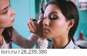 Купить «Professional visage artist doing make-up with black eyeliner for beautiful woman», фото № 28239380, снято 15 августа 2018 г. (c) Константин Шишкин / Фотобанк Лори