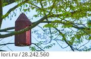 Купить «Birdhouse hangs on tree», видеоролик № 28242560, снято 26 марта 2018 г. (c) BestPhotoStudio / Фотобанк Лори