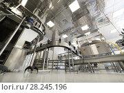 Купить «Steel conveyor for transportation of glass bottles.», фото № 28245196, снято 5 июля 2017 г. (c) Андрей Радченко / Фотобанк Лори
