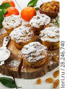 Купить «Mandarin muffins with raisin», фото № 28246740, снято 7 января 2018 г. (c) Надежда Мишкова / Фотобанк Лори