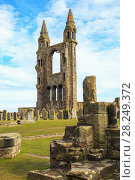 Купить «Detail of the ruins of St Andrews Cathedral, St Andrews, Fife, Scotland.», фото № 28249372, снято 14 марта 2018 г. (c) age Fotostock / Фотобанк Лори