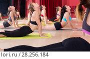 Купить «Girls pull their backs on yoga training», фото № 28256184, снято 31 мая 2017 г. (c) Яков Филимонов / Фотобанк Лори