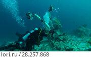 Купить «Professional underwater photographer prepares model for photo shoot in Indian Ocean», видеоролик № 28257868, снято 29 октября 2017 г. (c) Некрасов Андрей / Фотобанк Лори