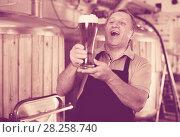 Купить «Brewer is standing with beer with foam in glass on his workplace», фото № 28258740, снято 18 сентября 2017 г. (c) Яков Филимонов / Фотобанк Лори