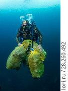 Купить «Scuba diver removing plastic marine litter from the sea bed.  Mljet National Park, Mljet  Island, Croatia. May 2015.», фото № 28260492, снято 27 апреля 2018 г. (c) Nature Picture Library / Фотобанк Лори