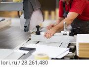Купить «carpenter with panel saw and fibreboard at factory», фото № 28261480, снято 10 ноября 2017 г. (c) Syda Productions / Фотобанк Лори