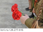 Victory day, silhouette of child with a red carnation. Стоковое фото, фотограф Вадим Архипов / Фотобанк Лори