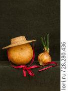 Купить «Натюрморт с тыквой, шляпой и проросшим луком», фото № 28280436, снято 9 апреля 2018 г. (c) V.Ivantsov / Фотобанк Лори