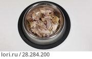 Купить «Миска с едой для животных», видеоролик № 28284200, снято 26 февраля 2018 г. (c) Кекяляйнен Андрей / Фотобанк Лори