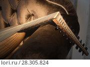 Купить «Lute of the 16th century», фото № 28305824, снято 21 февраля 2018 г. (c) Дмитрий Черевко / Фотобанк Лори