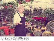 Купить «Portrait of female gardener who is working together», фото № 28306956, снято 23 февраля 2018 г. (c) Яков Филимонов / Фотобанк Лори