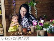 Купить «Mom and child are planting flowers», фото № 28307700, снято 14 апреля 2018 г. (c) Типляшина Евгения / Фотобанк Лори