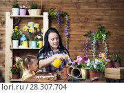 Купить «Mom and child are planting flowers», фото № 28307704, снято 14 апреля 2018 г. (c) Типляшина Евгения / Фотобанк Лори