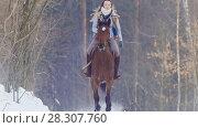 Купить «Young woman galloping on snowly outdoor on red horse - telephoto shot», фото № 28307760, снято 26 апреля 2018 г. (c) Константин Шишкин / Фотобанк Лори