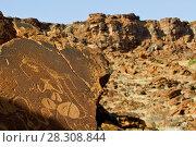 Купить «Bushmen petroglyphs, Twyfelfontein rock art site in Damaraland, southern Kaokoveld Wilderness, Namibia», фото № 28308844, снято 23 апреля 2019 г. (c) BE&W Photo / Фотобанк Лори