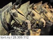 Купить «Horses of the Terracotta Warriors Army in Xian, Republic of China, Asia», фото № 28309112, снято 27 марта 2019 г. (c) BE&W Photo / Фотобанк Лори