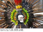 Купить «Feathers from the headdress of an Aztec dancer in Plaza de la Constitución in Mexico City», фото № 28309248, снято 11 декабря 2019 г. (c) BE&W Photo / Фотобанк Лори