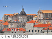Купить «A view of the Cathedral of Dubrovnik from the old city town walls», фото № 28309308, снято 16 июня 2019 г. (c) BE&W Photo / Фотобанк Лори