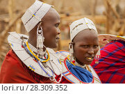 Купить «Massai group with traditional clothing in Masai Mara, Kenya», фото № 28309352, снято 20 мая 2019 г. (c) BE&W Photo / Фотобанк Лори